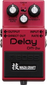 BOSS DM2W Waza Craft Delay Pedal